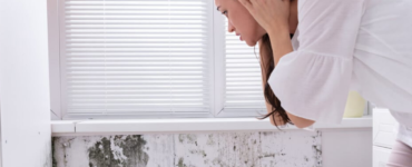 Health Hazards Caused By Molds In Your House